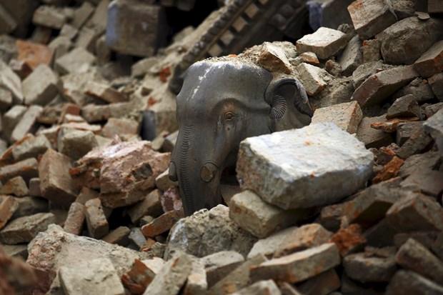 Birleşmiş Milletler İnsani İşler Koordinasyon Ofisi, yaklaşık 27 milyon nüfusa sahip Nepal'deki 75 idari bölgeden 30'unda yaklaşık 4.6 milyon kişinin depremden etkilendiğini vurguladı.