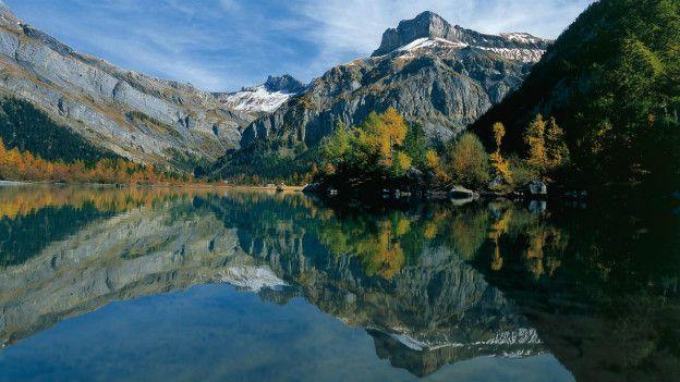 İsviçre'deki 195 kelebek türünün yüzde 60'ı bugün nesli tükenme tehlikesi olan canlılar kapsamında iken 52'si de ülkenin kendi kırmızı listesinde yer alıyor. Fakat çiftçilerin ve bağ sahiplerinin de yardımlarıyla bu bölge kelebekler için koruma merkezi haline gelmiş durumda.