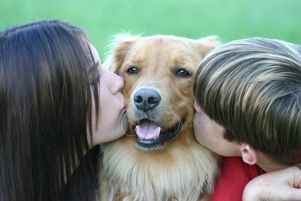 3. Evcil hayvanınız yıkarken kahve tanesi kullanırsanız hayvanın vücudundaki pirelerden kurtulursunuz.