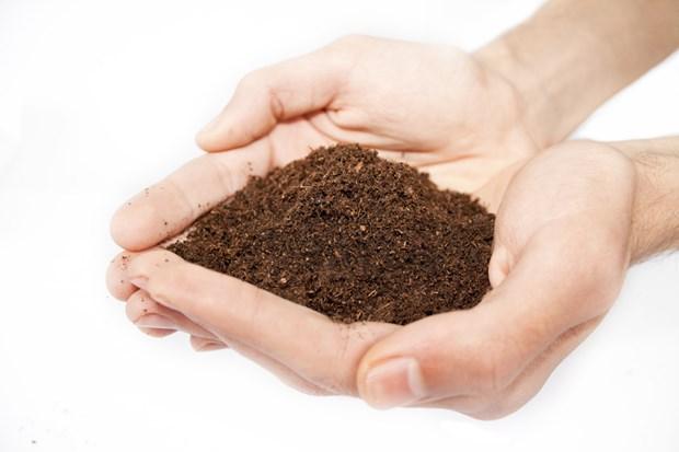 7. Toprak, kireç ve tebeşire aşermek Demir eksikliği anemisi olanlar besin olmayan maddeleri tüketmeye karşı yoğun bir istek duyulabiliyor. Örneğin toprak, kireç, kil, tebeşir, kağıt ve buz benzeri maddelere adeta aşerebiliyor.