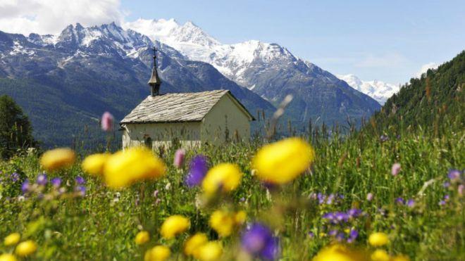Kelebeklerin türünü tespit etmek için, ziyaret ettikleri çiçekleri de bilmek gerekebilir. İsviçre'de toplam 195 kelebek türü, on binlerce de gece kelebeği olduğu biliniyor.