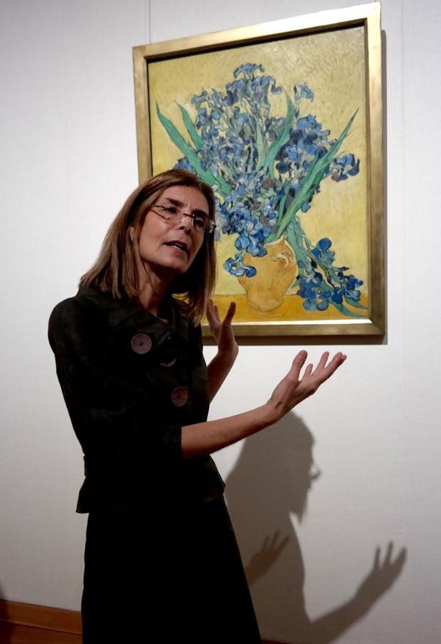 Sergiyle ilgili açıklamada bulunan Metropolitan Müzesi Avrupa Resmi bölümü küratörlerinden Susan Alyson Stein, tam 125 yıl önce bugün Van Gogh'un 11 Mayıs 1890 yılında akıl hastanesinde kaldığı sürede kardeşi Theo'ya gönderdiği iyileşmekte olduğuna dair mesajında, iki zambak eserinden bahsettiğini ve 13 Mayıs'ta ise kardeşi Theo'ya ikinci eserini de bitirdiğini yazdığını kaydetti.