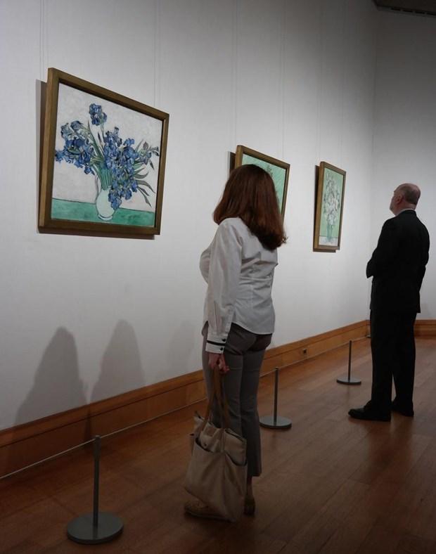 """Metropolitan Müzesi'ndeki """"Van Gogh: Zambaklar ve Güller"""" adlı sergide ünlü ressamın Fransa'da 1890 yılında ölümünden bir kaç ay önce yaptığı tuval üzerine yağlı boya eserler sergileniyor."""