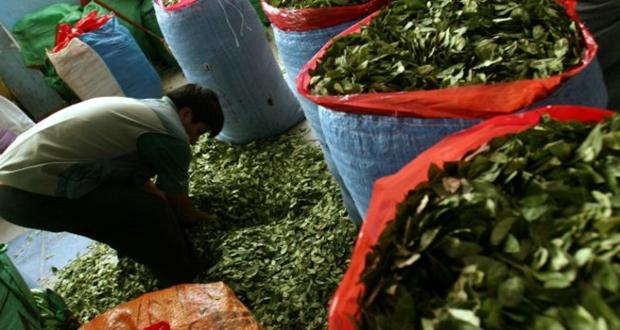 Senelerdir kokainli çay satılıyormuş 'Tesadüf sonucu farkedilmiş'