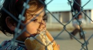 10 bini aşkın sığınmacı çocuğun mechul sonu