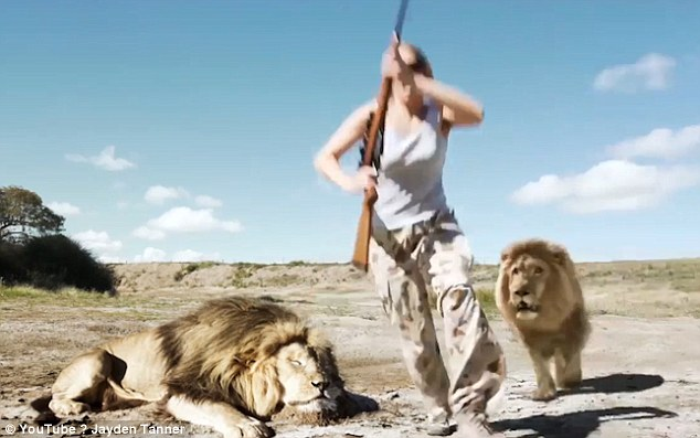 Lion Takes Revenge On Trophy Hunter: Lion takes its revenge on trophy hunter but viewers are skeptical