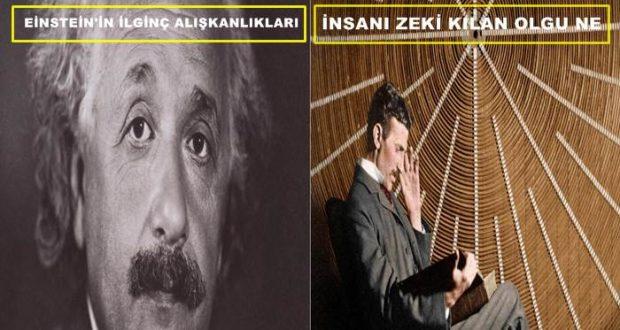 Einstein'ın ilginç alışkanlıkları - DERGİ - İnsanı zeki kılan ne?