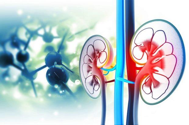İnce Hastalık: Verem hastalığının 8 belirtisine dikkat