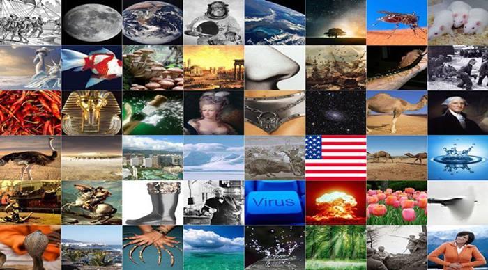 Muhtemelen Çoğu Kişi tarafından Bilinmeyen 48 İlginç Bilgi