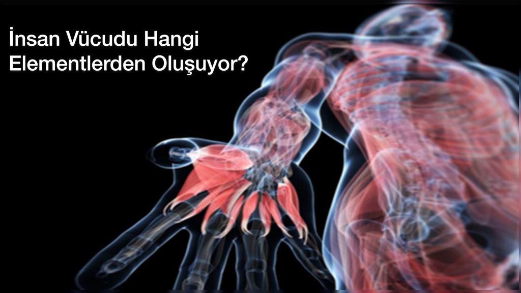 İnsan Vücudu Hangi Elementlerden Oluşuyor? Ölen hücreler ne oluyor?