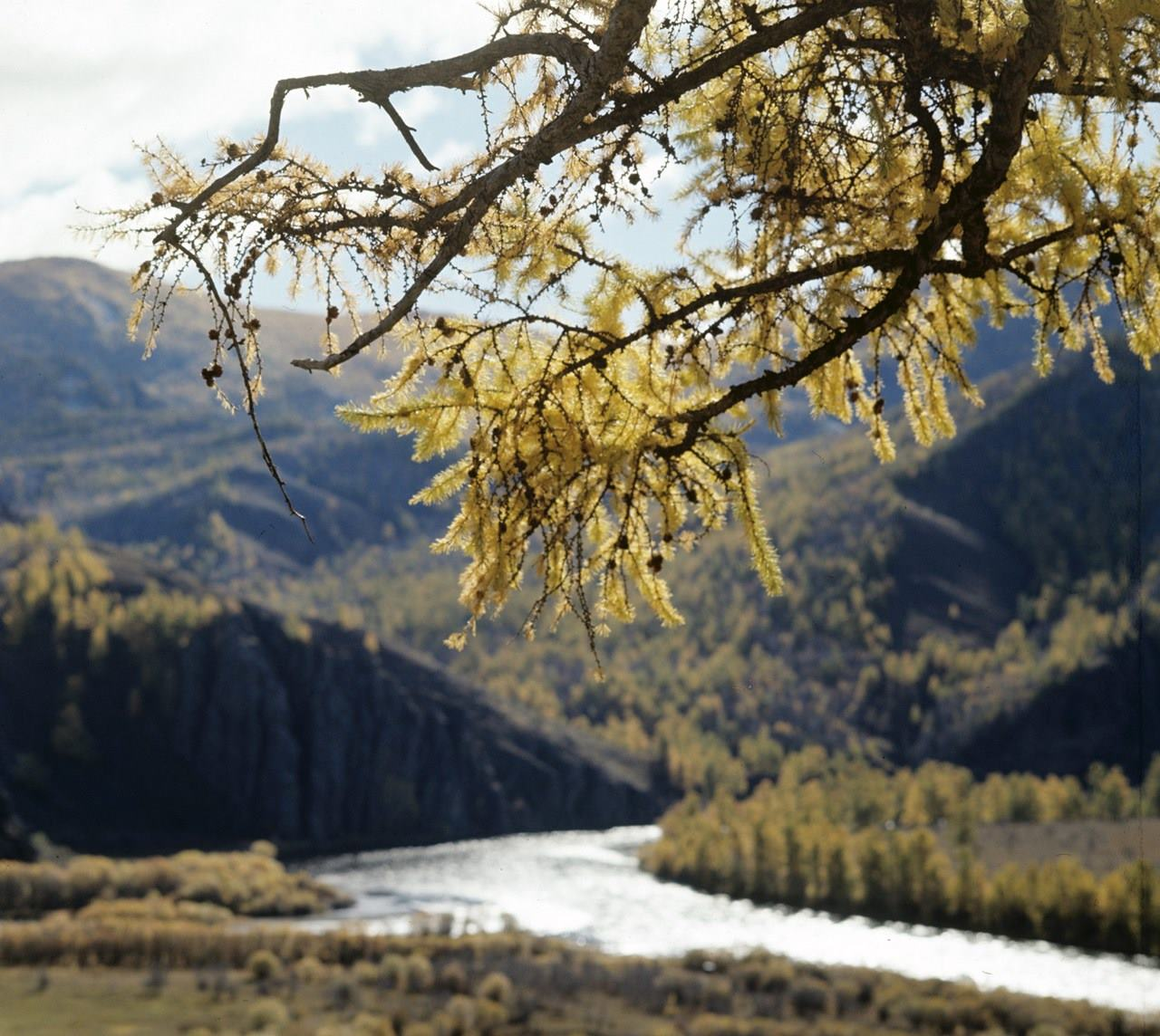 Dünyanın başlangıcı ve sonu: Türk mitolojisinde kutsal nehirler