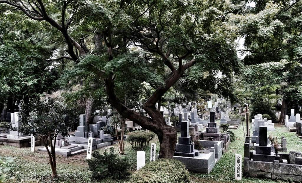 Tokyo Hakkında 5 Tüyler Ürpertici Gizem