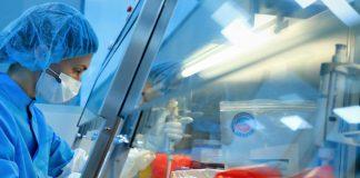 Rus bilim insanlarından yılan zehri enziminden koronavirüsü baskılayan ilaç