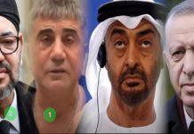 Mısırlı Gazeteci Sabir Meshur: BAE Sedat Peker'i Tutukladı