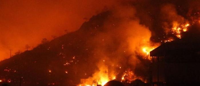 Financial Times: Erdoğan Orman yangınlarına müdahale şekli nedeniyle baskı altında